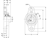 Stainless steel 2 Bolt Flange (SUCSFL) Line Drawing