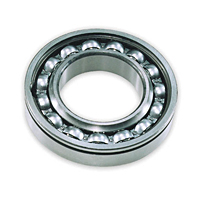 Fafnir® Maximum Capacity Ball Bearings (200W, 300W)