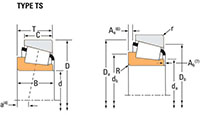 TRB TS Cone Line Drawing